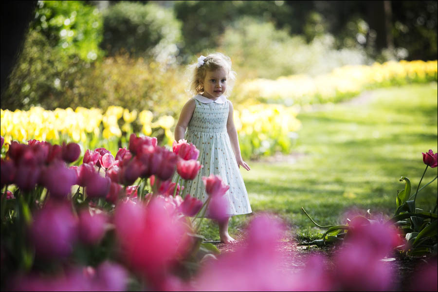young girl walks through the tulips